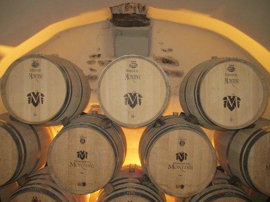 Manoir de la Roseraie : Domaine de Montine winery. We left with a case of wine