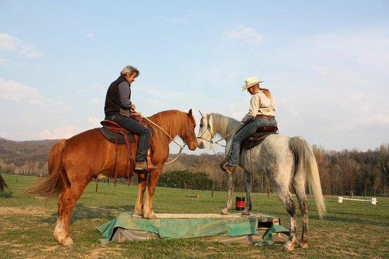EquiLuna Oasi di Cavalli e Persone: Giocare insieme
