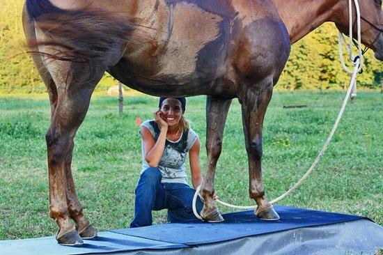 EquiLuna Oasi di Cavalli e Persone: Relax insieme