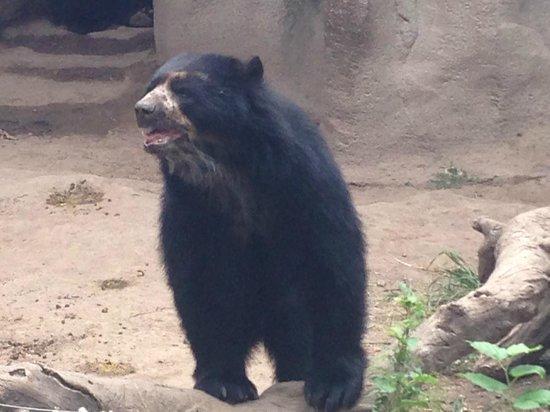 Parque Zoologico La Maxima