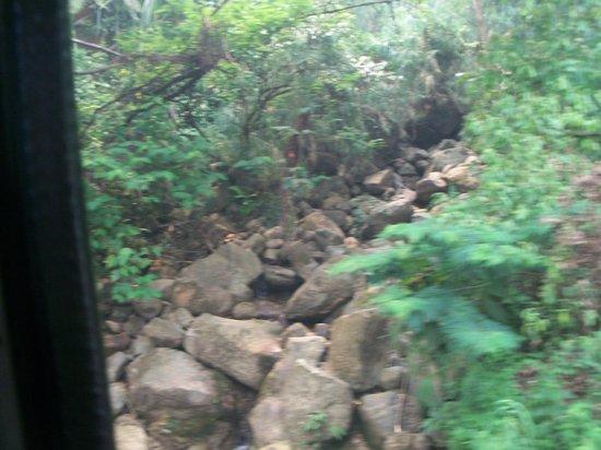 Hutan Lindung Bung Hatta