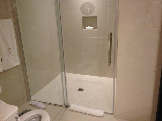 Terra Nova All Suite Hotel : Chambre