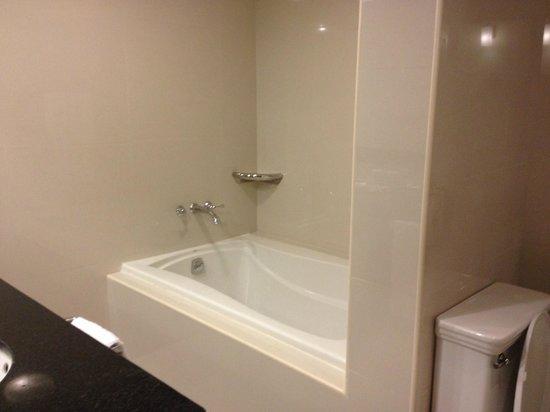 Terra Nova All Suite Hotel: Chambre