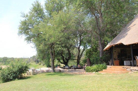 Motswari Private Game Reserve: Garten