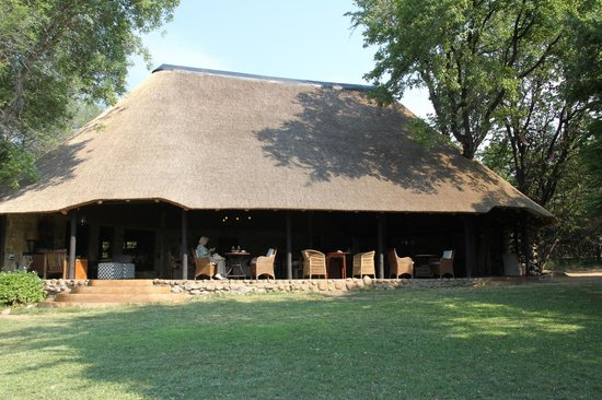 Motswari Private Game Reserve: Bar und Lounge