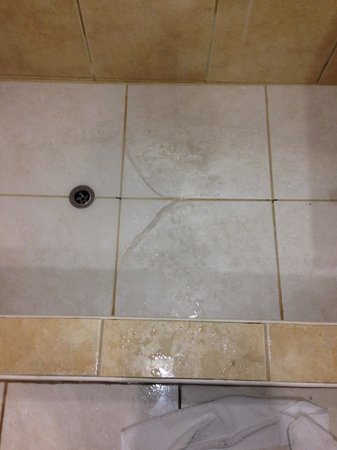 The Normandie Hotel & Conference Centre : shower was not cleaned
