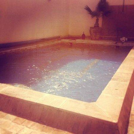 Riad Les Trois Mages: Pool/terrace