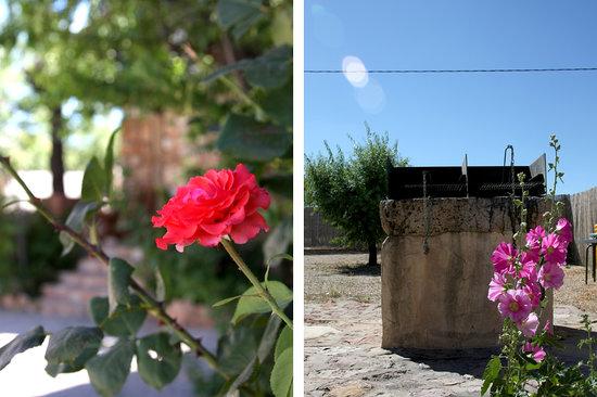 Cabañas Rurales Quijote y Sancho: Exterior barbacoas