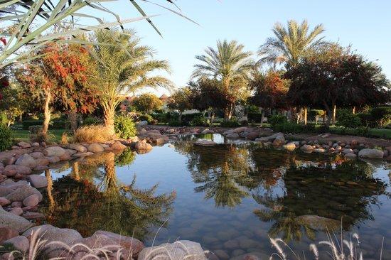 Aurora Oriental Resort Sharm El Sheikh : tranquility