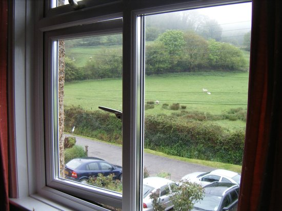 Coombe Cottage B&B: view from room