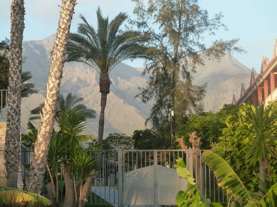 GF Gran Costa Adeje: Mountains behind the hotel from the garden