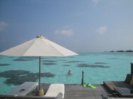 Gili Lankanfushi Maldives: Me testing the water