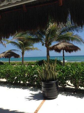 El Dorado Royale, a Spa Resort by Karisma: view from health bar
