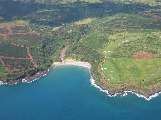 Wings Over Kauai Air Tour: coastline of Kauai