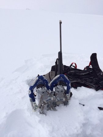 Svalbard Wildlife Expeditions: Well equipped with snow shoes and a gun for the polar beers.