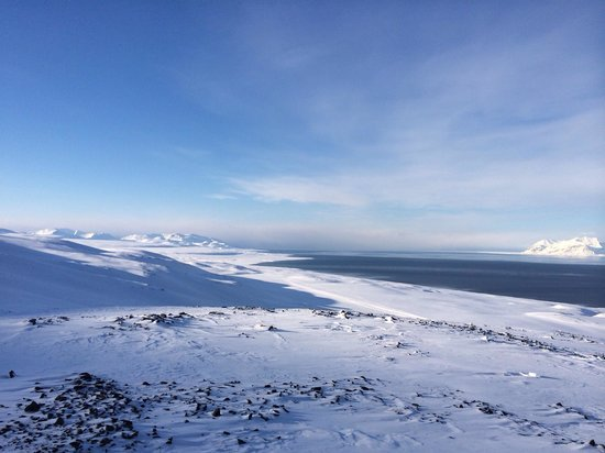 Spitzbergen Adventures: View on the road along the coast