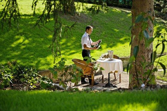 Hotel Restaurant L'Ami Fritz : Jardin