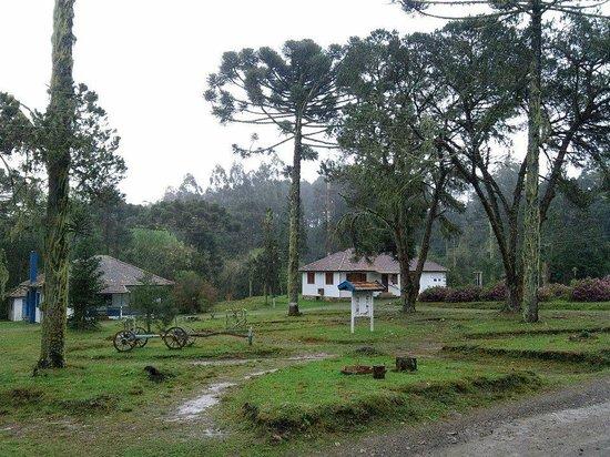 Floresta Nacional De Sao Francisco De Paula