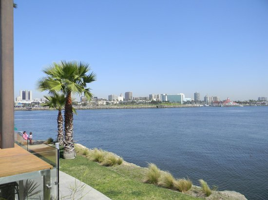 Hotel Maya - a DoubleTree by Hilton Hotel : Long beach from our room