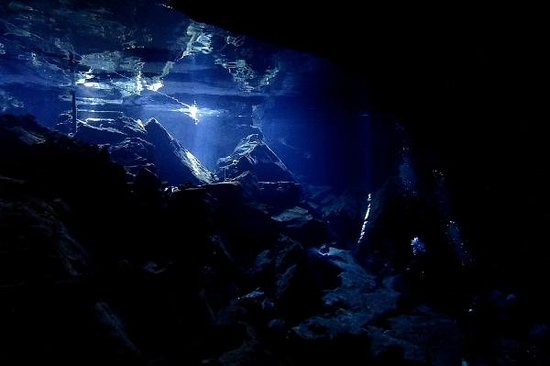 Cenote Chikin Ha: Chikin Ha