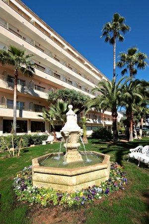 Hotel Son Caliu Spa Oasis: Fuente