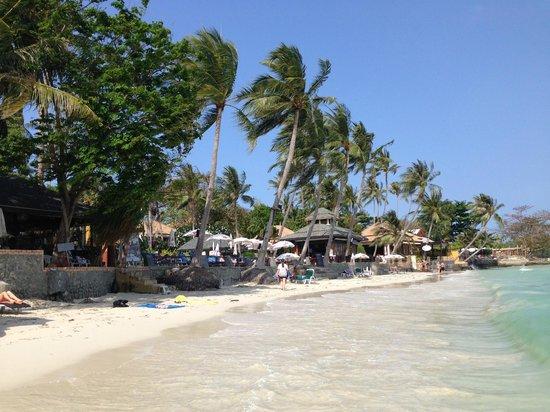 Novotel Samui Resort Chaweng Beach Kandaburi : Chaweng Beach
