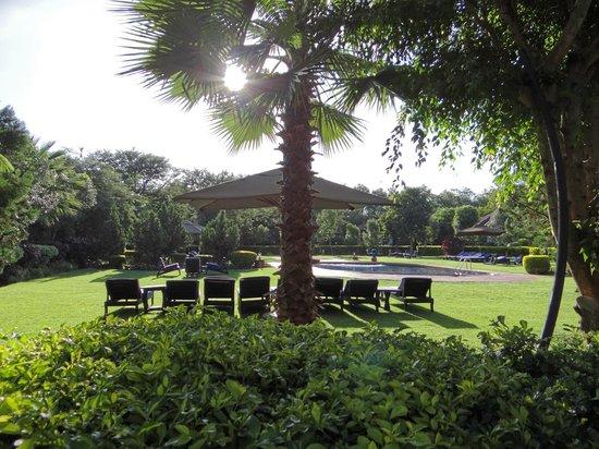 Bougainvillea Safari Lodge piscina