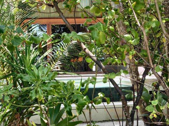Park Hyatt Maldives Hadahaa: Park Pool VIlla