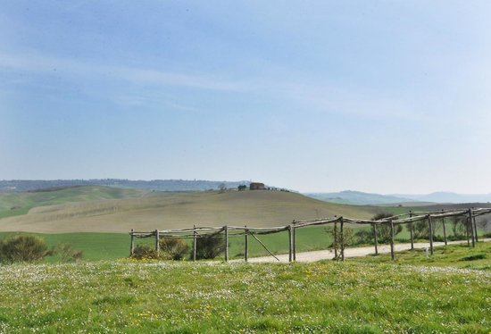 Agriturismo Il Rigo: Виды