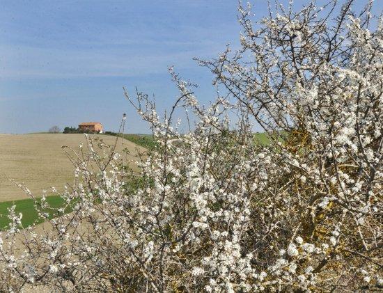 Agriturismo Il Rigo: Второй корпус