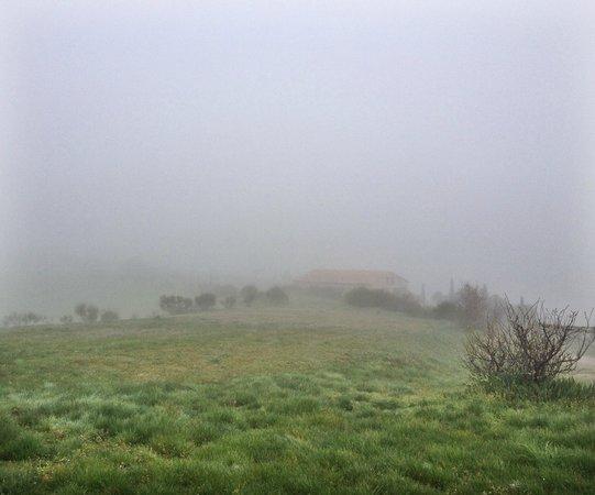 Agriturismo Il Rigo: Утренний туман