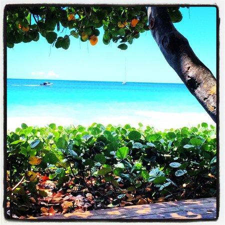 Keyonna Beach Resort Antigua: the beach