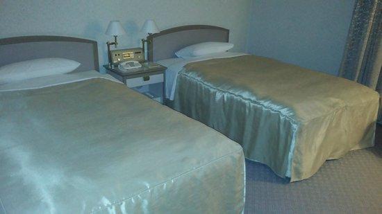 Hotel Grand Palace: ツインです