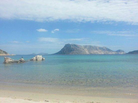 Grande Baia Resort & SPA : Grandiose Aussicht