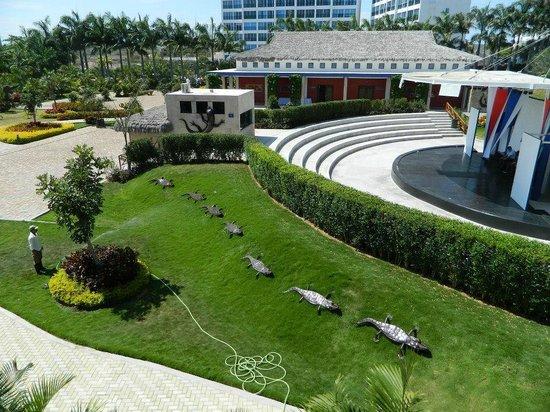 Royal Decameron Punta Centinela: Vista de la Habitación con Vista Jardín