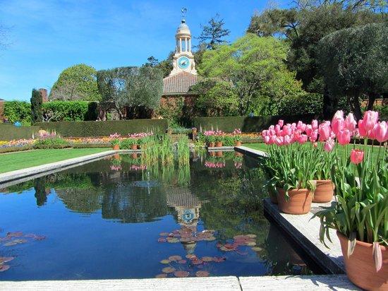 Filoli Gardens Cafe Garden Ftempo