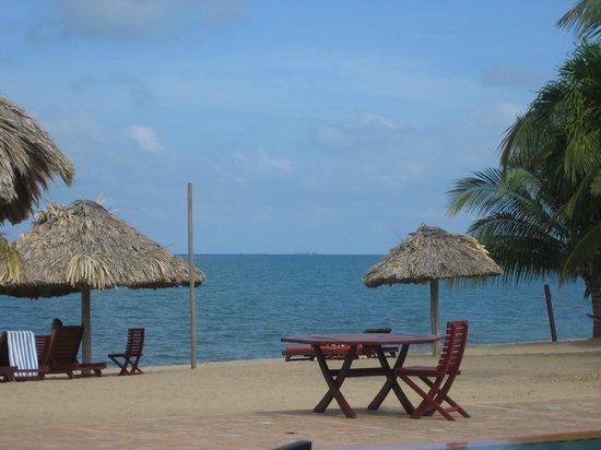 Belizean Dreams: beach area sans loungers!