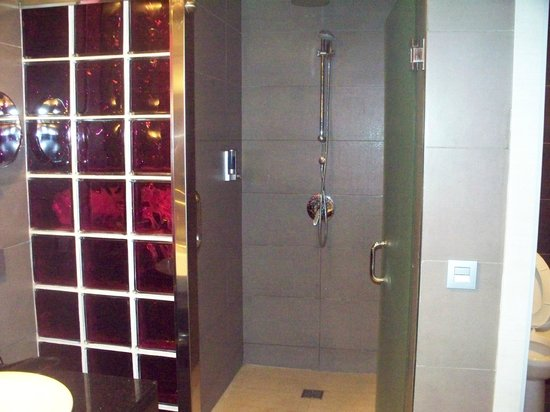 Hotel Riu Palace Bavaro : view of shower with violet glass