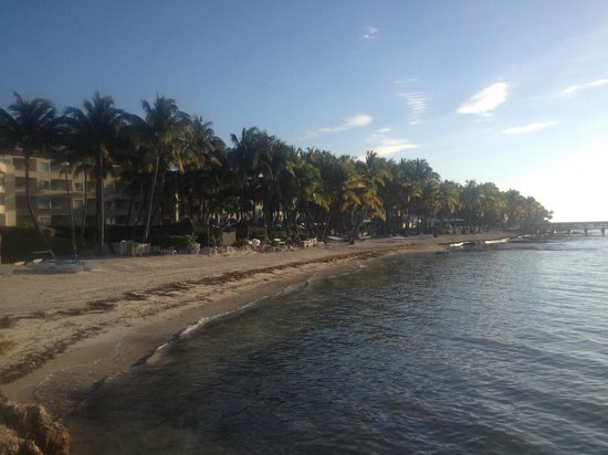 Casa Marina Key West, A Waldorf Astoria Resort : Beach area