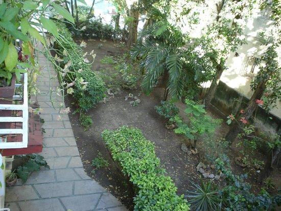 Casa Petronila: Mirando hacia el hermoso jardin interior