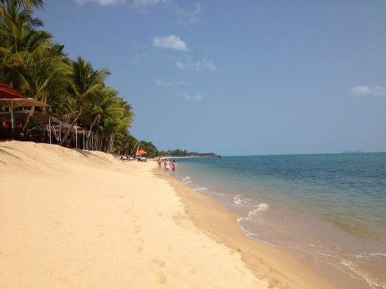 Santiburi Beach Resort & Spa : Strand steil abfallend