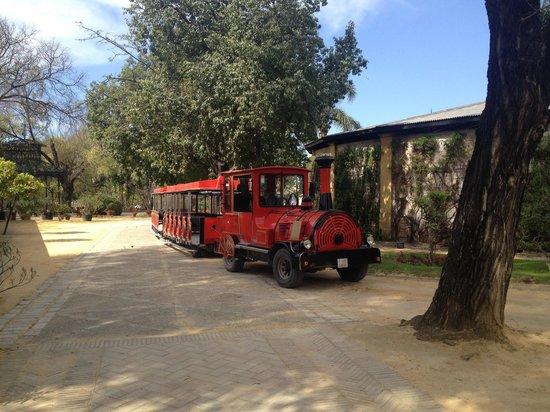 Bodegas Tio Pepe: The train