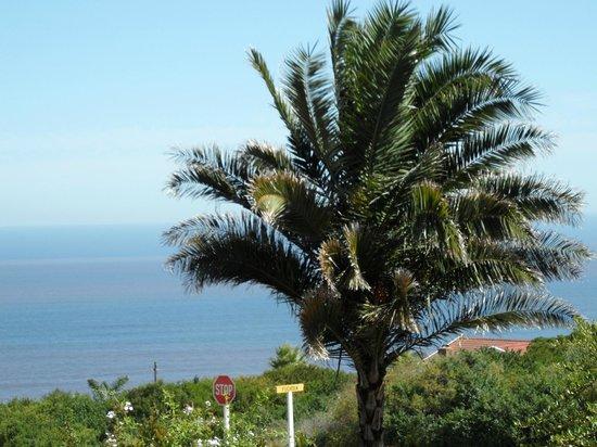 Blue Horizon Bay Guest House: Prachtig uitzicht op de Indische Oceaan.