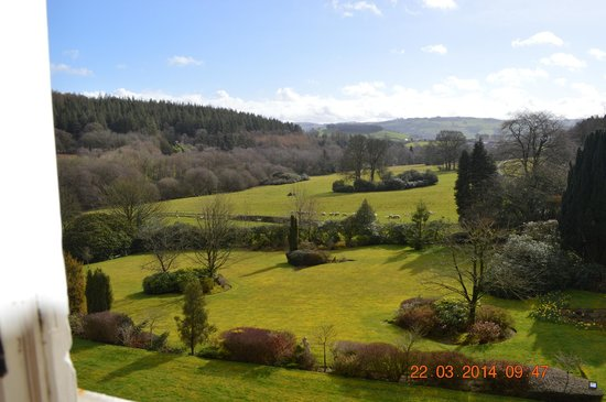 The Falcondale Hotel: Veiw  from our room window. Heaven!!!