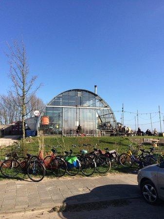 Noorderlicht Cafe : an enormous greenhouse?