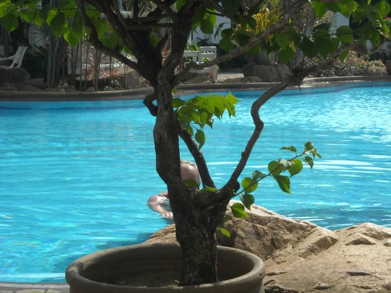 Ban Nam Mao Resort: Basen a włąściwie kawałek basenu