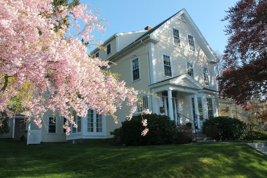 Photo of Beech Tree B&B Rockport