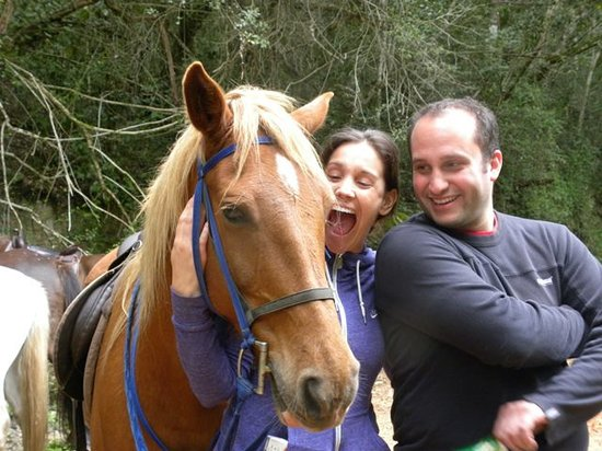 Garden Route Horse Trails: Having a laugh with Zolly