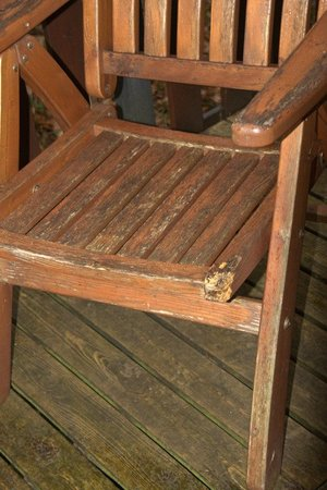 Burnside Park: A half-chewed and dirty patio chair