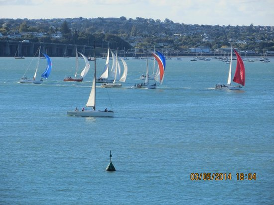 Auckland Waterfront Serviced Apartments : Sailing races every afternoon